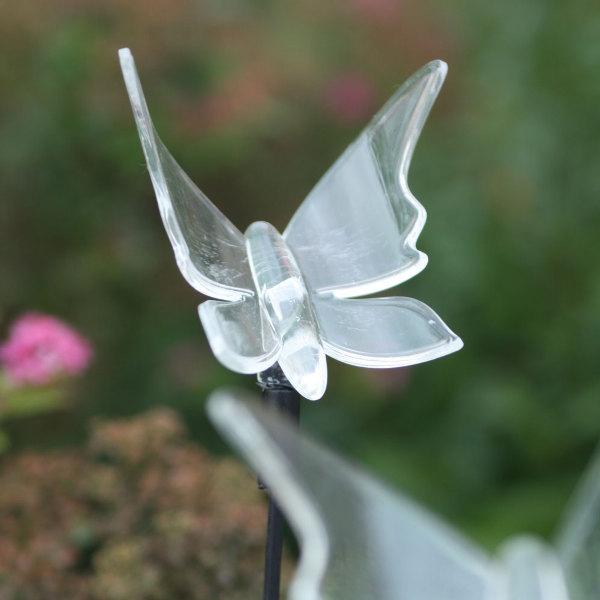 Papillon solaire lumineux