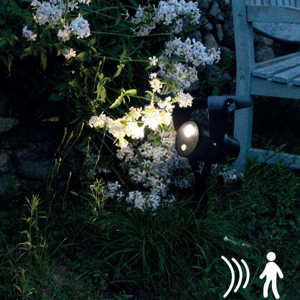 Power spot 800 lm Detect.