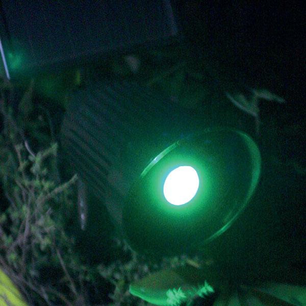Spot RGB